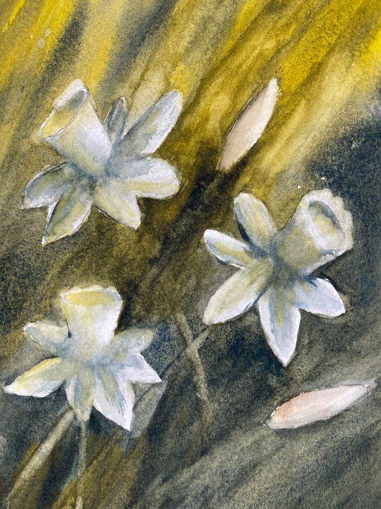 Three Narcissus - Simpson Art