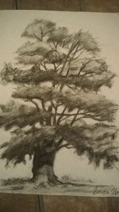 My first Charcoal Tree