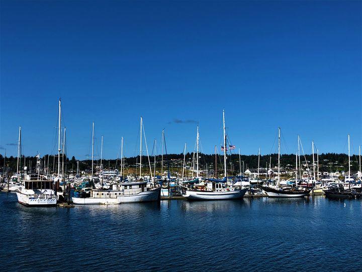 Boats in Newport, Oregon - A.M. Stearns