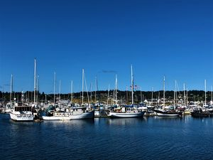 Boats in Newport, Oregon