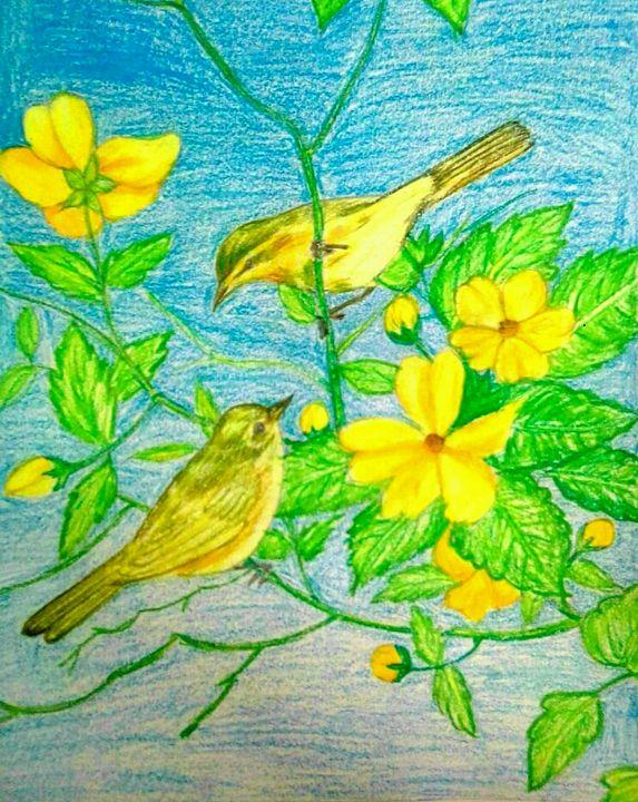 Birds - Mayuri