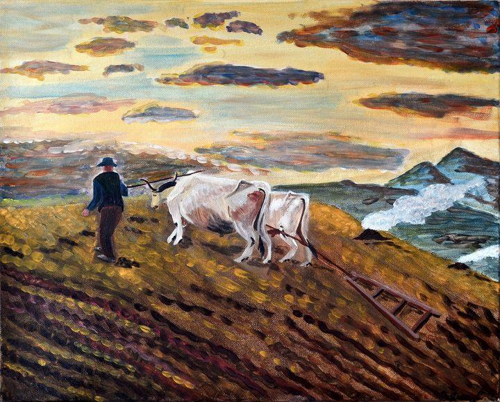 Pasture at Sunset - Cristina Casucci