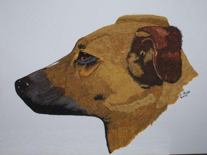 Buster - paintings 4 u