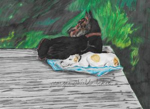 Doberman and Greyhound 2 - Margie Shields McKee
