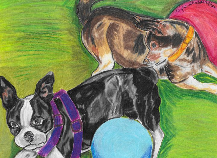 Miniature Boston and Brown Chihuahua - Margie Shields McKee