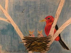 Scarlet Tanager Feeding Babies - Margie Shields McKee