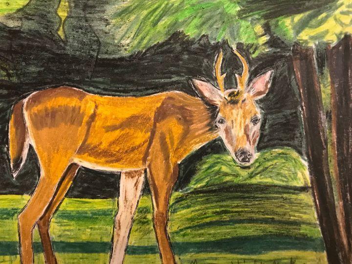 Small Antlered Deer - Margie Shields McKee