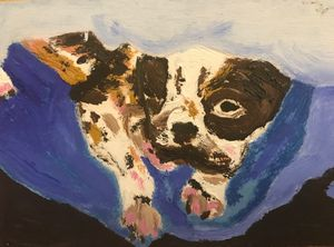 Boston Terrier in Oil