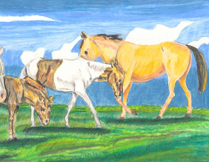 The Herd - Margie Shields McKee