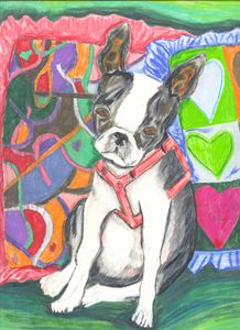 Boston Terrier By Pillows