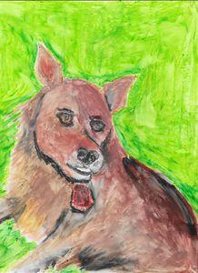 Robbie the Pomeranian - Margie Shields McKee