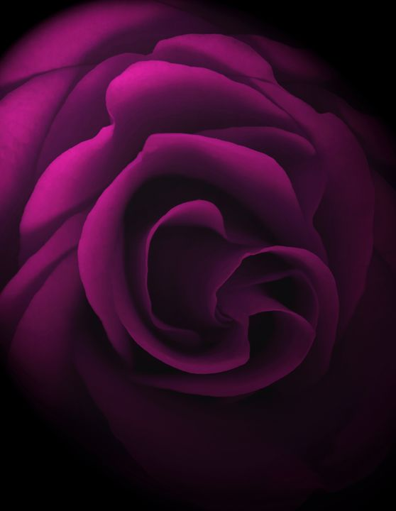 Pretty in Pink - David Hughes