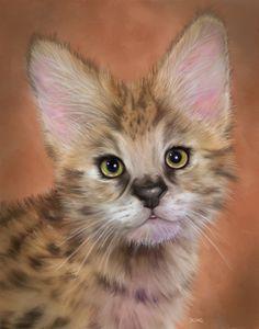 African Serval Wild Cat - Chadsart