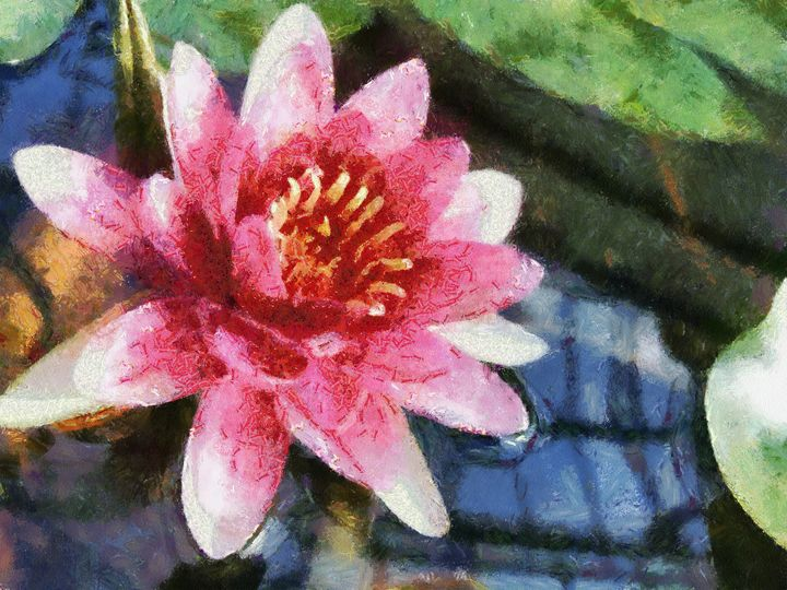 lotus - poorbike'art