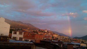 Rainbow in the brick jungle