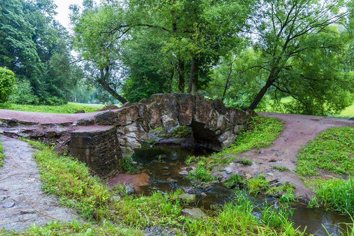 The old bridge - Dobrydnev
