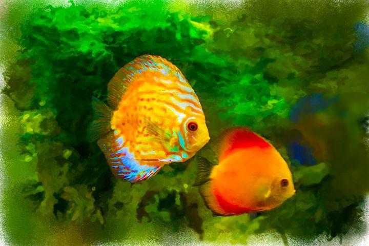 Bright colored tropical fish on alga - Dobrydnev