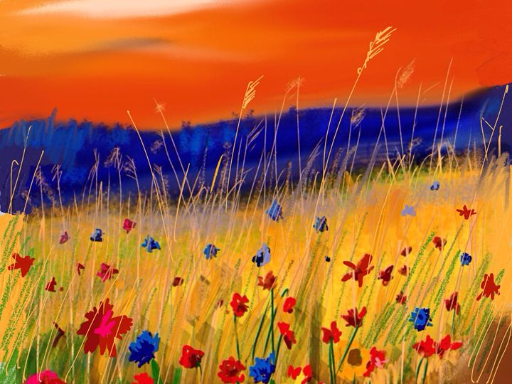 Sunset and wild flowers - Stetson Creek Gallery