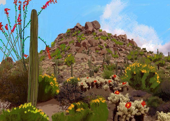 Boulders near Pinnacle Peak Arizona - Stetson Creek Gallery