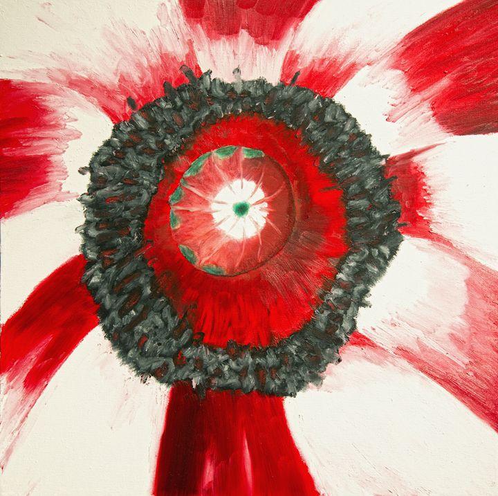 Poppy - J Tuttle Art