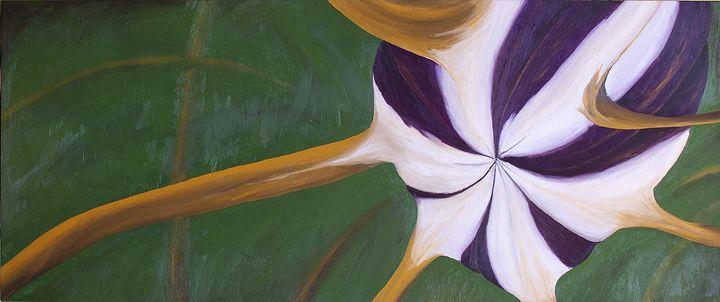 Seed Pod - J Tuttle Art