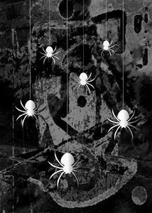 Spider Bungee