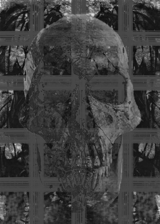 Skullcelled - C & F Gallery