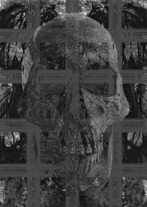 Skullcelled