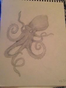 Octopus sketch