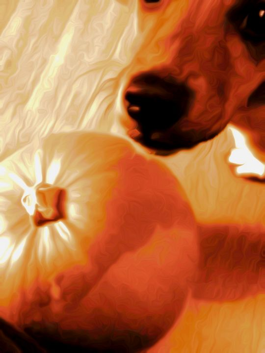 Pumpkin pie - Debbie r