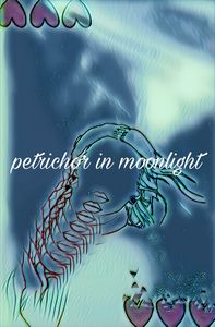 petrichor in moonlight