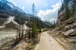 Lake Louise trails