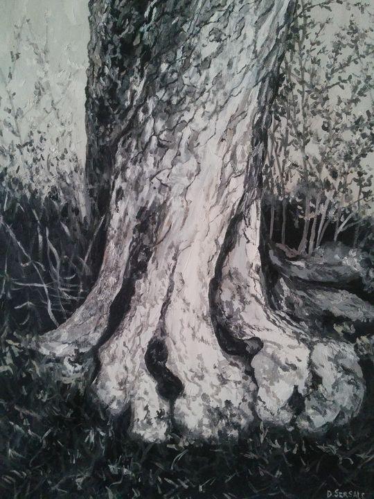 """L'ulivo"" original oil painting - Daniela Sersale"
