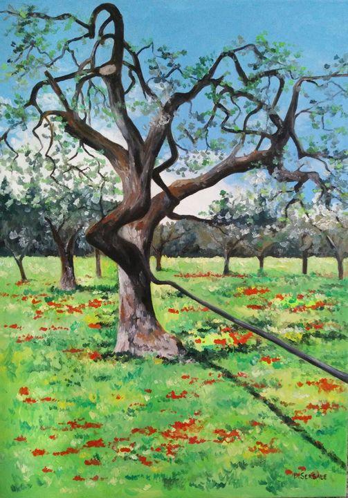 """Campagna barese"" original painting - Daniela Sersale"