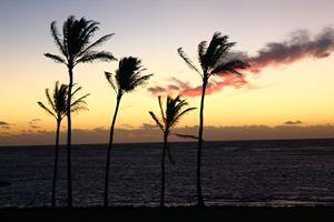 Winter Sunset, Hawaiian Style