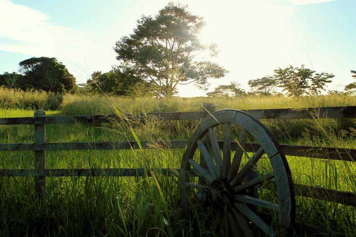 Hawaiian Ranch - Brooke Goodman
