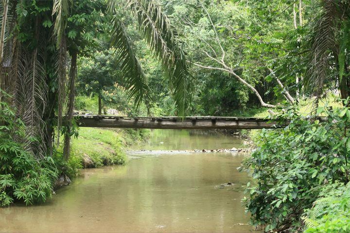 Bridge - syafie1104
