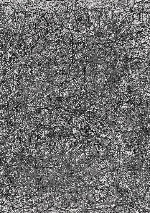 Network01 - MajdaLoo