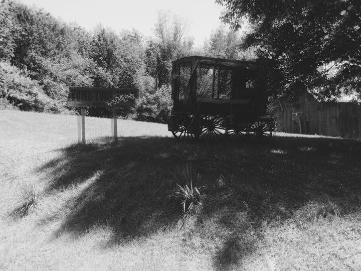 mystery wagon - OptikDreamZ