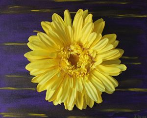 Daisy Power (Yellow)