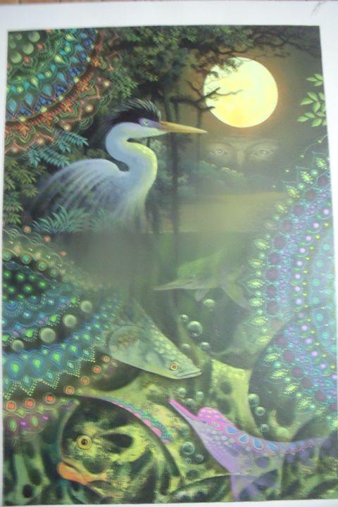 Wild Water Life - PERUVIAN JUNGLE 2014