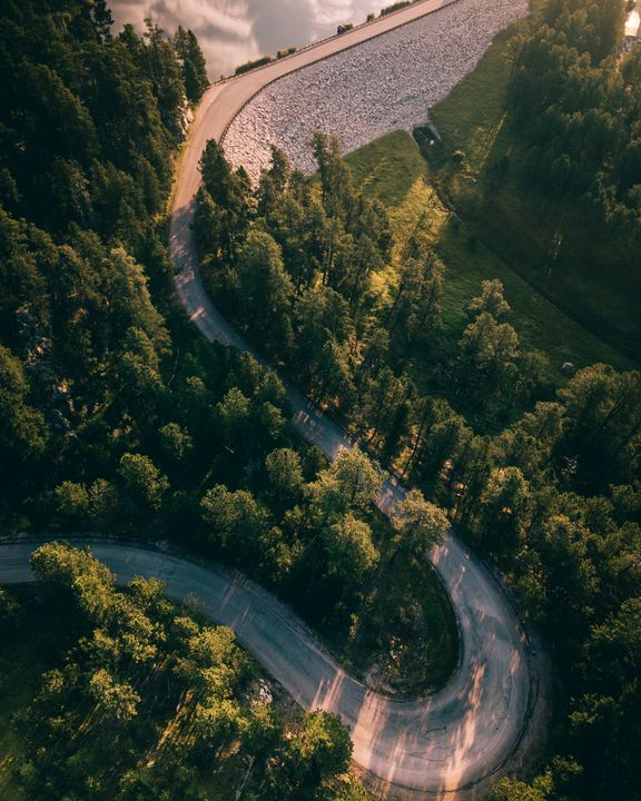 Black Hills - Preston Buechler