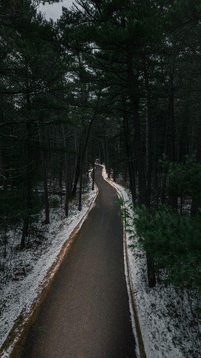 Snowy Road - Preston Buechler