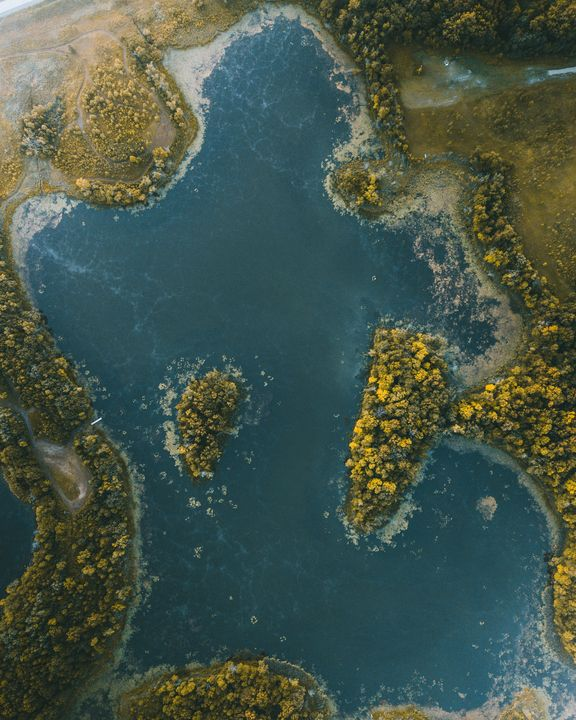 Puzzle Piece Pond - Preston Buechler