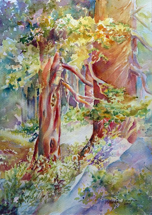 Sierra Shade Trees - MB Watercolors