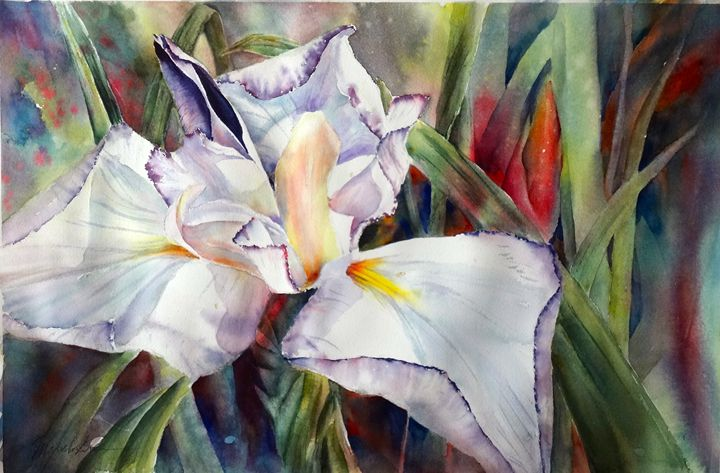 Purple Iris - MB Watercolors