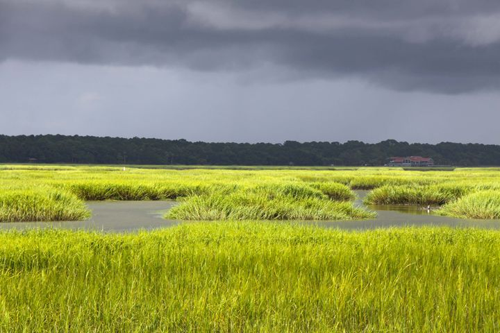 Storm coming in the Marsh - Wendy Theisen Halsey Photography