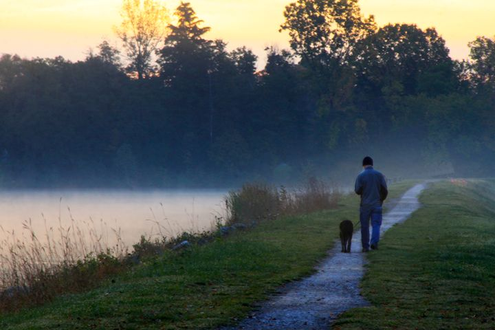 Early morning walk with an old dog - Wendy Theisen Halsey Photography