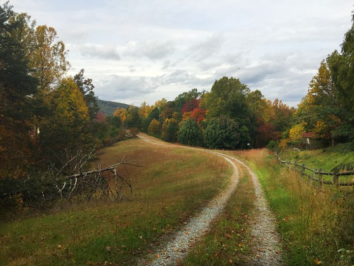 farm lane - Wendy Theisen Halsey Photography