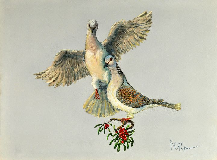 Two Turtle Doves - Miguel Flores